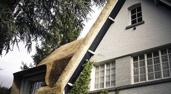 featured_small_brasschaat_wohnhaus_600x330