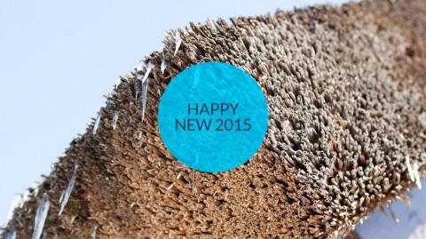 reetdachdecker_happy_new_year