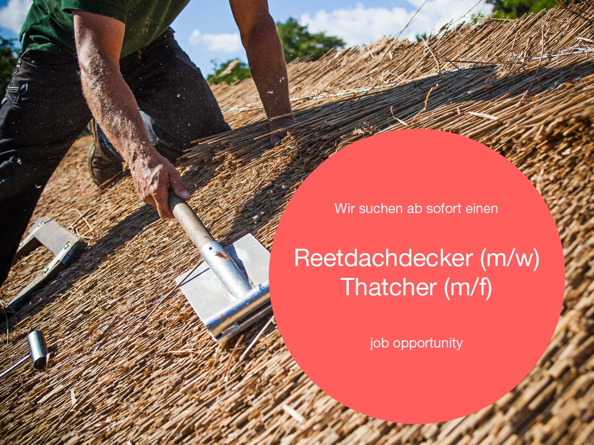 reetdachdecker_thatcher