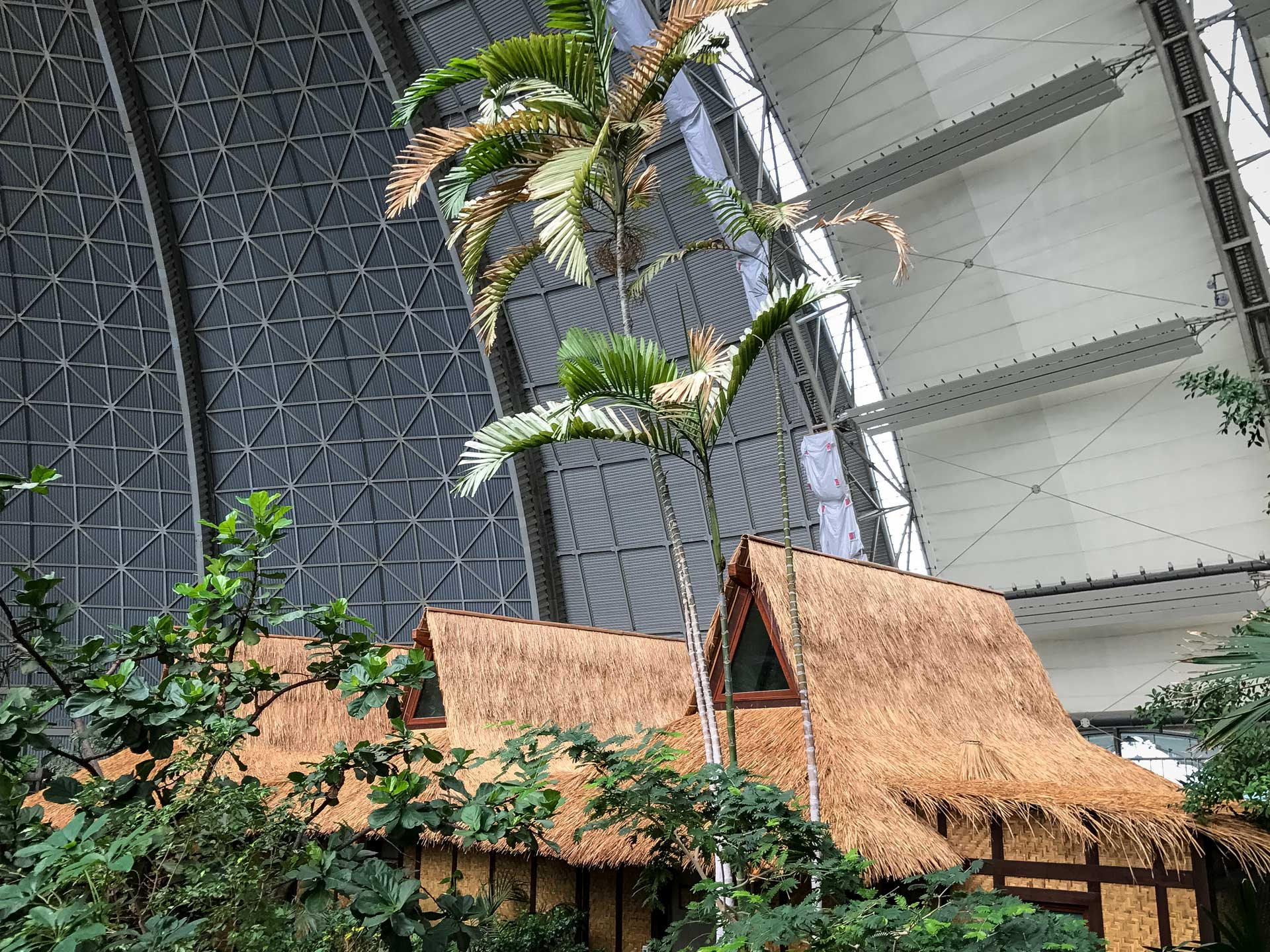 tropical_island_brandenburg_reetdachdecker02
